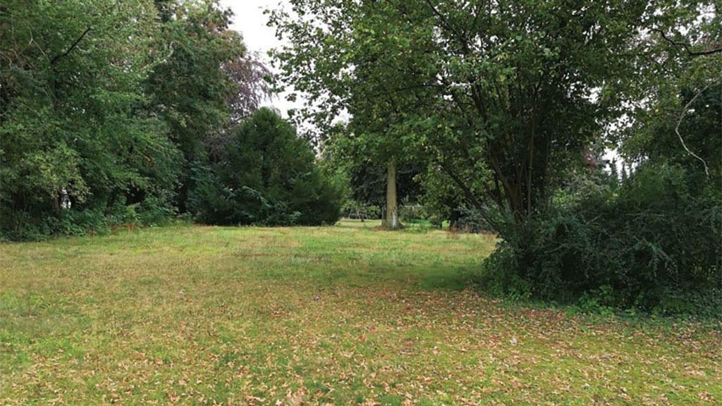 ARKITURA unser Wohnbauprojekt in Illertissen - alter Baumbestand am Grundstück verwandelt die Anlage in eine Perle im Grünen